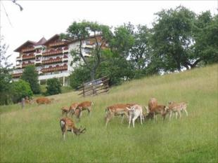 Natur- und Wohlfuhlhotel Kastenholz