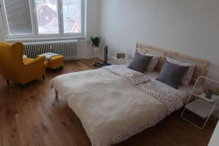Luxurious apartment 3 min walk to city center - snack, beverages included in price