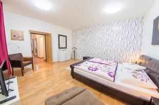 布拉格01區的2臥室公寓 - 58平方公尺/1間專用衛浴2 Bedroom Old Town Apartment