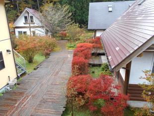 日光小熊日誌別墅 Nikko Log Cottage Little Bears