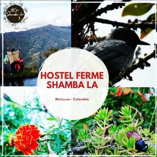 Hostel Ferme Shamba la