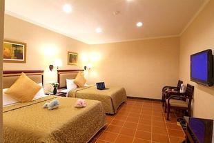 桃園龍潭朴堤商務旅館Puit Commercial Hotel
