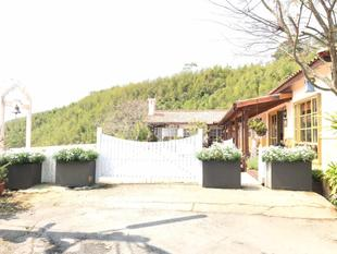 阿里山茶香花園