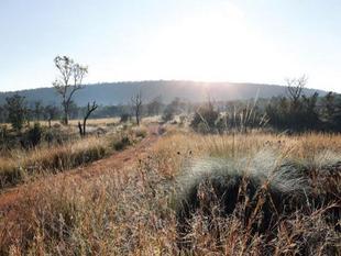 香巴拉私人禁獵區飯店Shambala Private Game Reserve