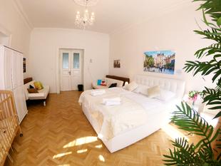 布拉格01區的1臥室公寓 - 26平方公尺/2間專用衛浴Large room with two shared bathrooms