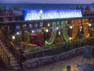 企鵝村達哈卜酒店 Penguin Village Hotel Dahab