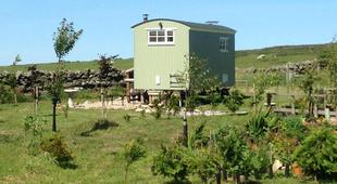 The Buteland Stop Shepherds Hut