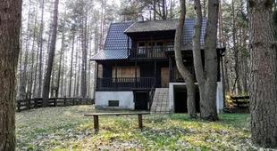 Warchaly near Szczytno, RUSTIC LODGE at Lake