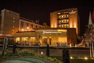 伊斯坦堡格倫飯店 Gorrion Hotel Istanbul