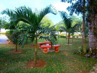 珊瑚海花園旅館 Coral Seas Garden