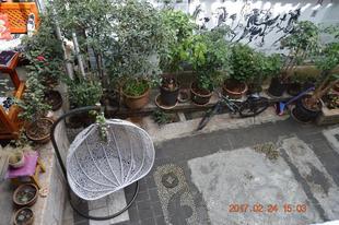 麗江市古城區麗江媽媽納西客棧lijiang Mama Naxi Guesthouse