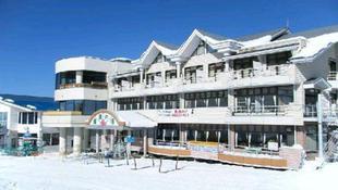 宿儺之湯喜悅厚朴飯店 Hotel Joyful Honoki
