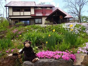 妙高質樸猴小屋旅館
