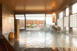 多美迎松山天然溫泉飯店