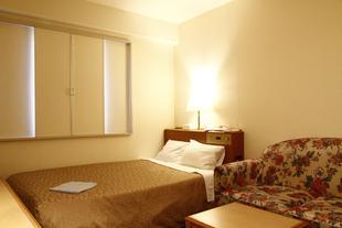 川崎王寶中心大飯店Kawasaki Central Hotel