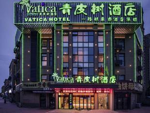 青皮樹徐州高鐵站酒店Vatica Xuzhou High Speed Railway Station Hotel