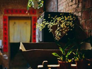 67老街客棧67 Old Street Backpacker Hostel