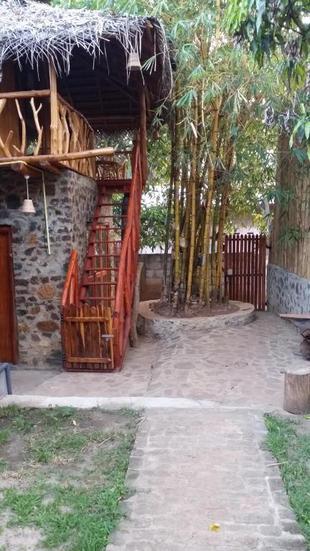 Lizard Safari Lodge